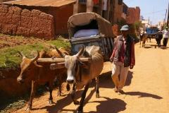 Madagaskar 2008 020
