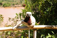 Madagaskar 2008 199